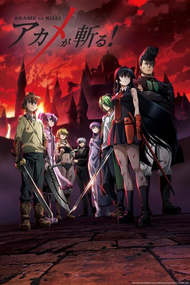 Akame ga Kill! Cover Art featuring the members of Night Raid