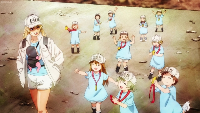 Platelets from the anime series Cells at Work!!