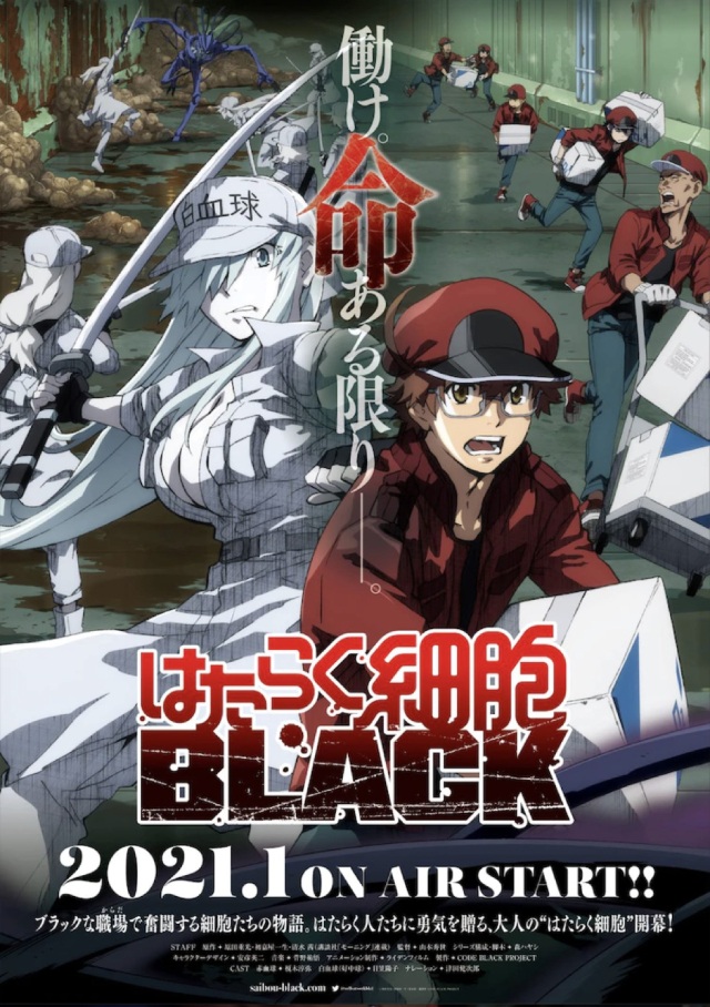 Cells at Work! CODE BLACK! anime series cover art