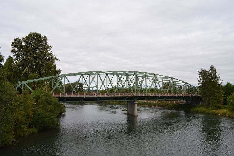 Photograph of the Ferry Street Bridge taken from the nearby Peter DeFazio bridge. It is a gray day in Eugene, and the river is calm. There are douglas firs on either side of the bridge, and there are no cars in the photo.