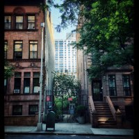 Narrow: The NYC Pocket Park