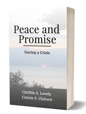 Peace and Promise book download