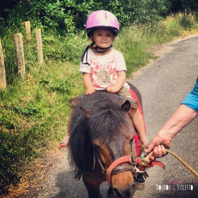 Instagram poney Hardelot