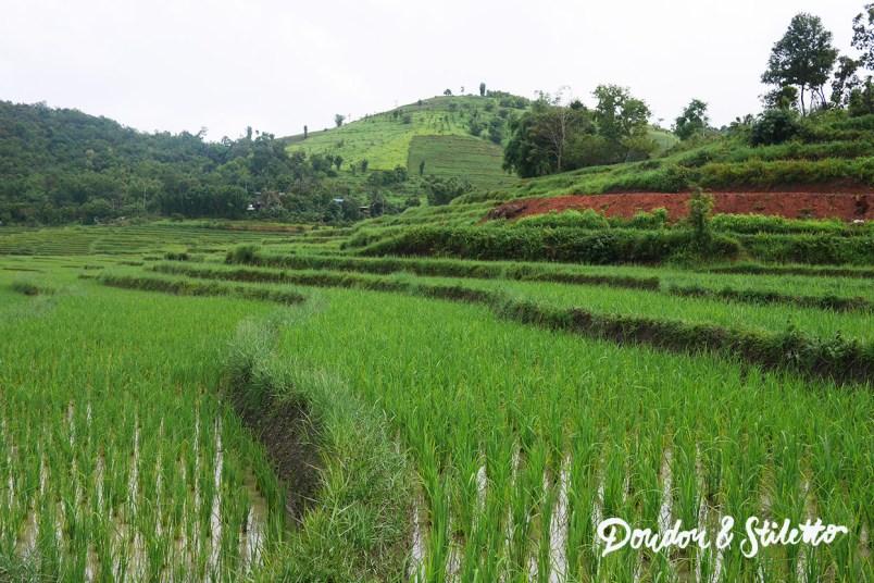 Evasion Karen Chiang Mai2