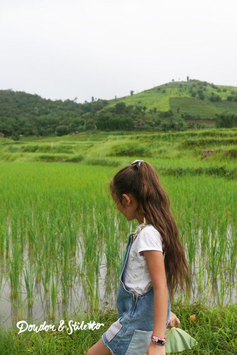 Evasion Karen Chiang Mai6