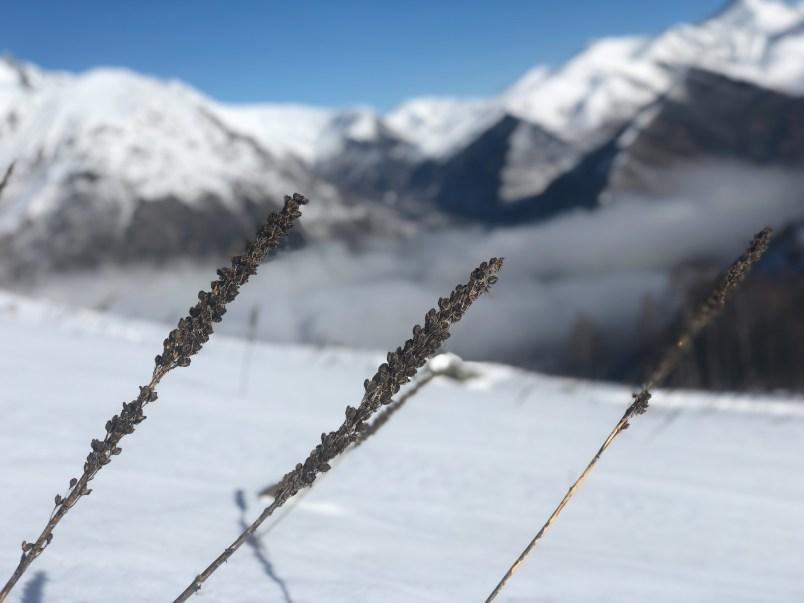 Les 2 Alpes15