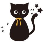 ブログに正直に書くことが出来ません。。私猫かぶってるんです!!