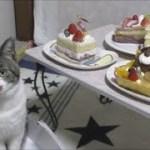 猫と一緒に☆子供の日☆シャトレーゼの可愛いケーキでお祝いしよう☆リキちゃんにも思わぬプレゼント!?【リキちゃんねる 猫動画】Cat video キジトラ猫との暮らし