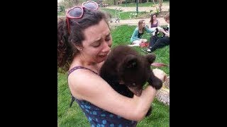 インターネット上で一番ホットなビデオ♥面白い動物♥犬、猫、動物の面白い瞬間#70