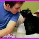 【感動】傷心の兵士を救った野良猫が行方不明に!数か月後、偶然訪れた譲渡会で、突然ケージから手が…【世界が感動!涙と感動エピソード】