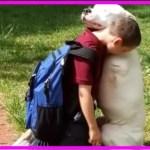 【感動】片腕の犬が家族とハグ…愛情たっぷりに相手を包み込む姿に目頭が熱くなる…【世界が感動!涙と感動エピソード】