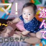 【生後306日】おちゃめなゴロちゃん ~可愛くて面白い仕草をまとめました~ Funny Baby Collection. [306 days after birth]