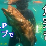 サップで魚突きに行ったら、凄いのが獲れた【ナラギョEp.18】アカハタとクエ
