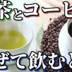 緑茶とコーヒーを混ぜると得られる効果・効能が凄い!ダイエットにもなる美容・健康効果5選!知ってよかった雑学