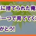 【感動する話泣ける話】オヤジ覚悟しろよ!