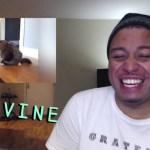 面白い日本の動画 | Vine 2