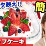 【簡単レシピ】ハプニングの連続!(笑)スコップケーキの作り方◆誕生日祝いやクリスマスパーティーに♪池田真子 Christmas Cake Cooking
