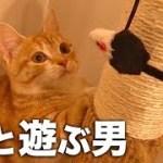 【かわいい】猫と遊ぶ男達。反応が可愛すぎてニヤニヤが止まらない【おもしろ:人気動画】