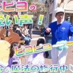 新人ファンカスト シミズさん「うさピヨの可愛い声💕」(2019.4)【HaNa】
