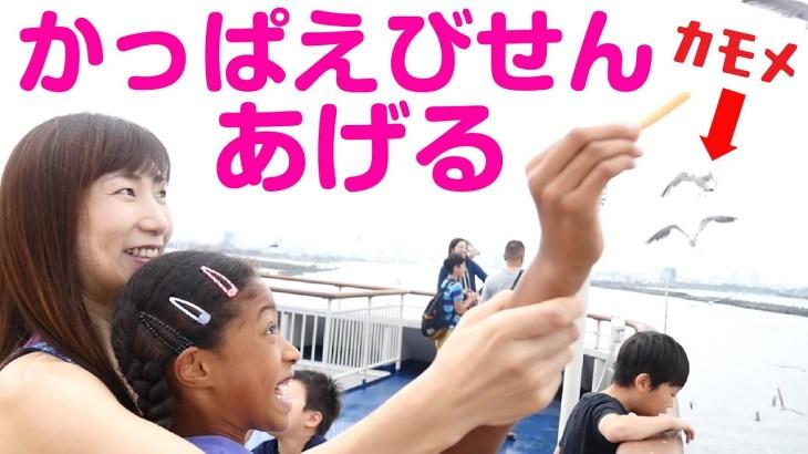 カモメってえびせん食べるの?どうやって?船で見たすごい光景に興奮する親子😅Feed the seagull on ship to SADO