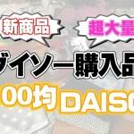 【100均】新商品♥ダイソー購入品紹介♡可愛い商品/キッチングッズ、掃除グッズ、収納グッズ