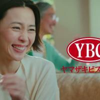 木村佳乃 が出演する ヤマザキナビスコ チップスター のCM  「一緒に食べよう」篇