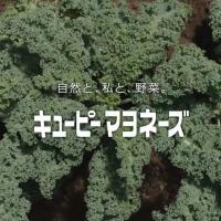 キユーピー マヨネーズ のCM「NATURE 風見鶏」篇。ナレーター  森山直太朗。