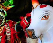 Seeing red at the Boi Bumba festival in Brazil