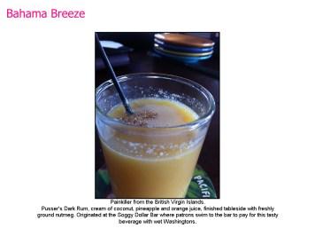 Bahama Breeze-06