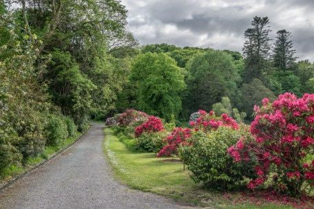 Bantry House Gardens