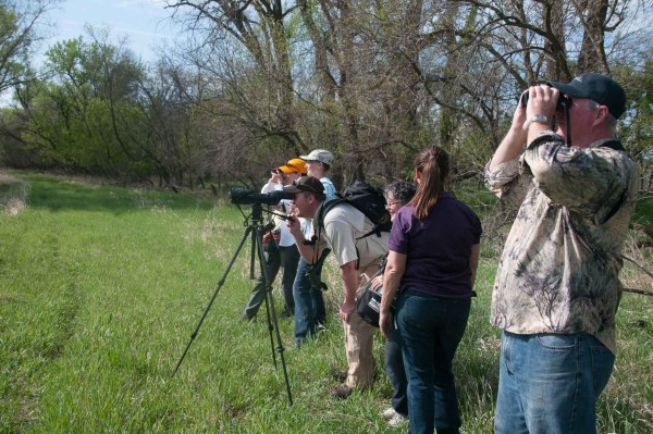 Birdwatchers watching bald eagles in their nest.