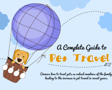 Travel with pets – what you need to know