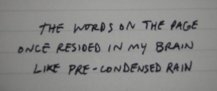 words-brain-analogy