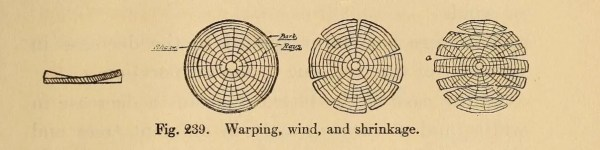 Wood warping, winding, and shrinking. Don't let this happen to your dulcimer!