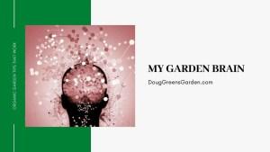 garden brain