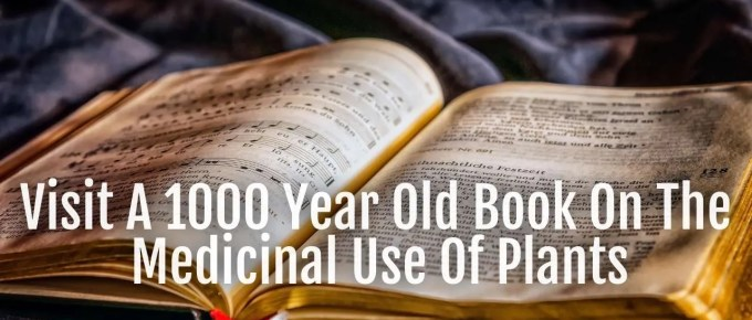 1000 year old book