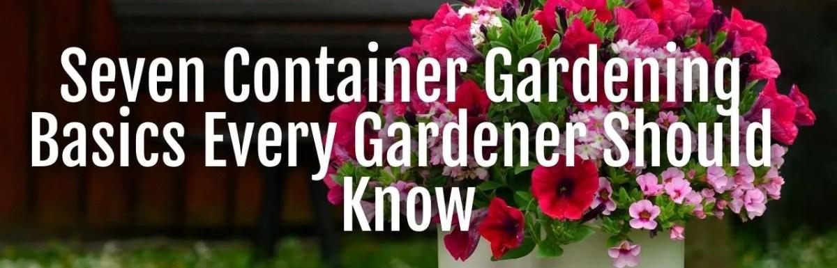 container garden basics
