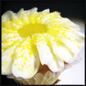 lemon daisy cupcake