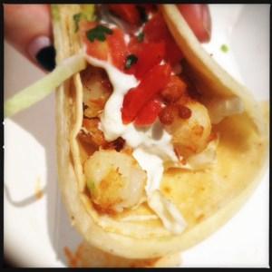 scallop taco