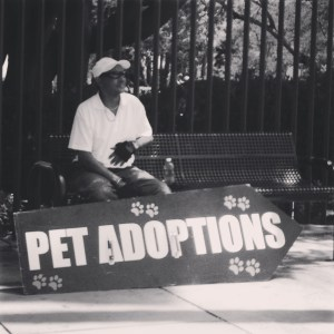 No Kill LA Adoption Event