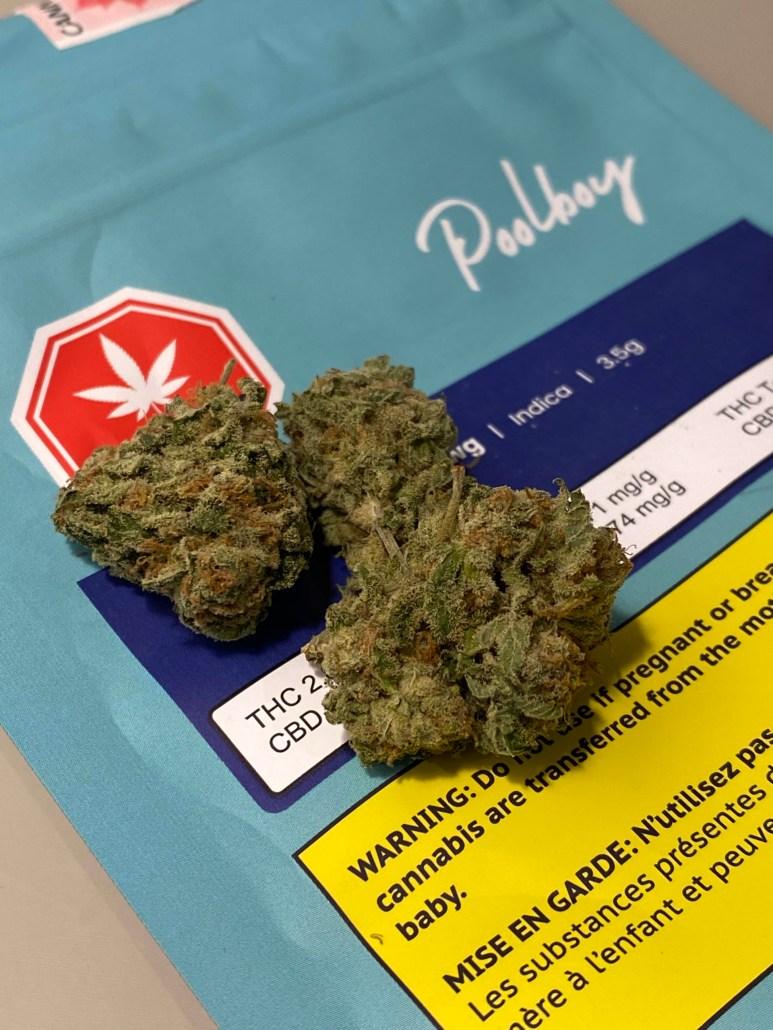 Chem Dawg by Pool Boy Cannabis