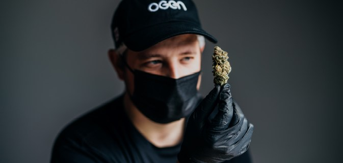 Ogen Cannabis