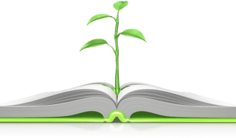 Wisdom and the Wise: Themes in Proverbs 1