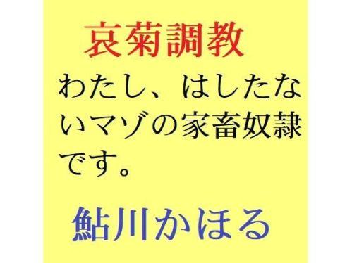 https://www.dmm.co.jp/dc/doujin/-/detail/=/cid=d_209012/