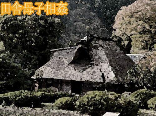 https://www.dmm.co.jp/dc/doujin/-/detail/=/cid=d_212536/