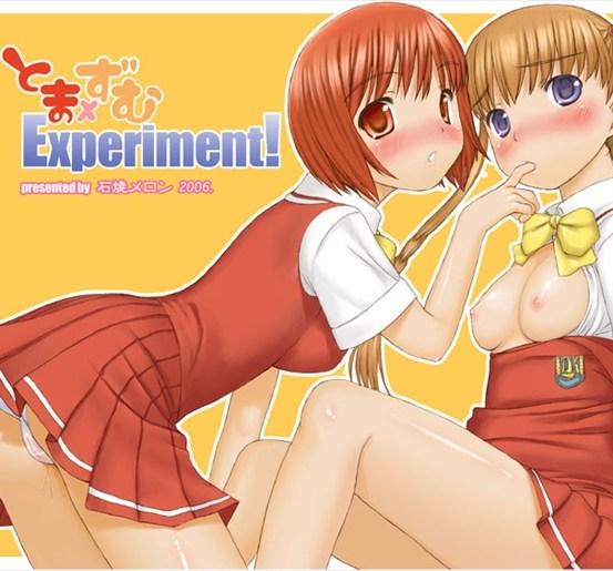 tomazumuexperiment001