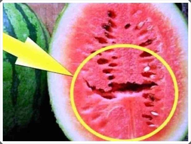 احذروا البطيخ الأحمر (الدلاح) لهذا السبب