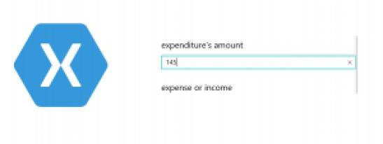 xamarin forms numeric entry