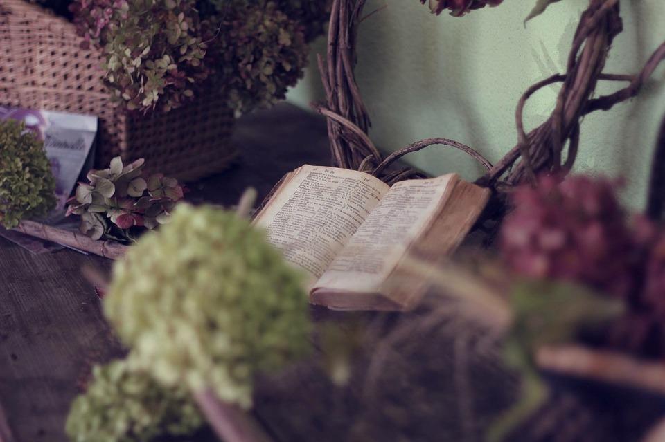 book-1210027_960_720