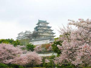 姫路城花見
